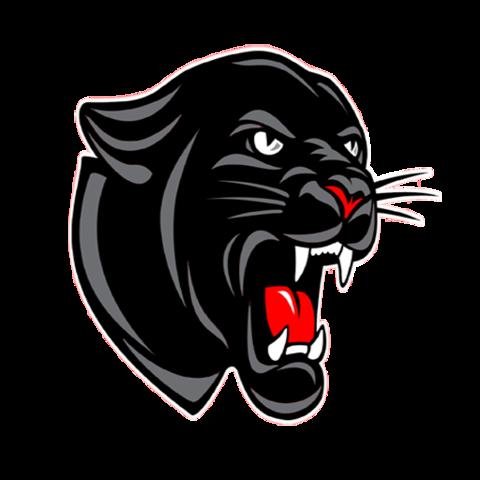 Stigler High School mascot