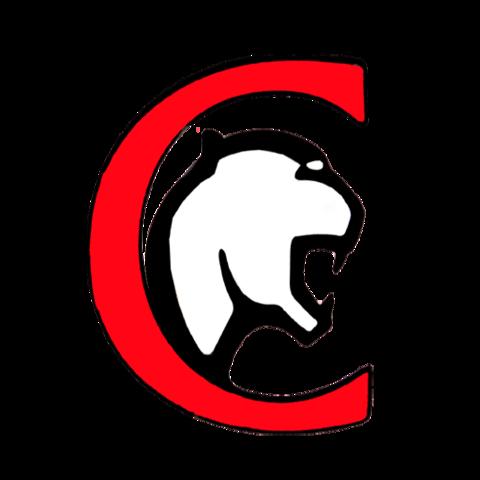 Clarksville High School mascot