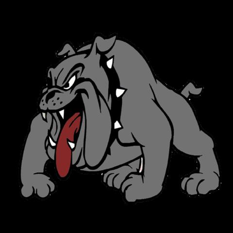 Spiro High School mascot