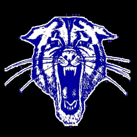 Hector High School mascot