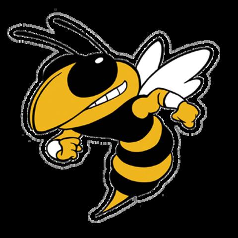 Clinton High School mascot