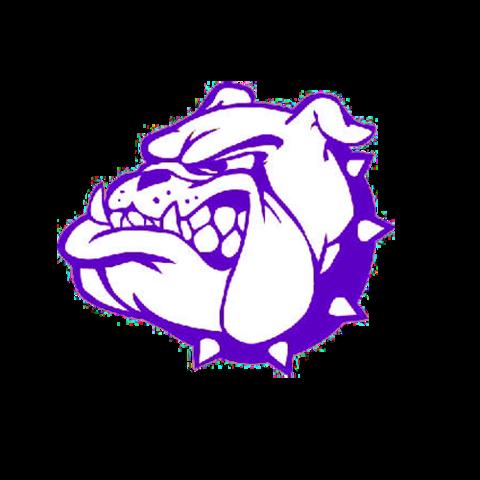 Harrisburg High School mascot