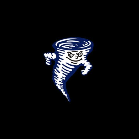 Zeigler-Royalton High School mascot