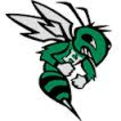 Frazee High School mascot