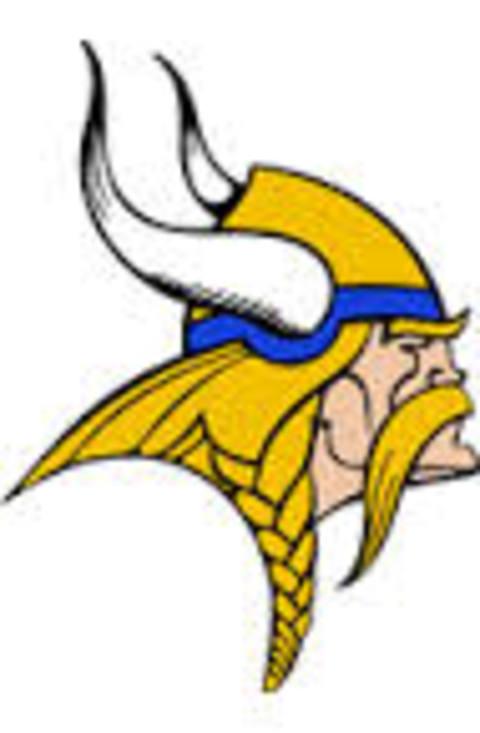 Hayfield High School mascot