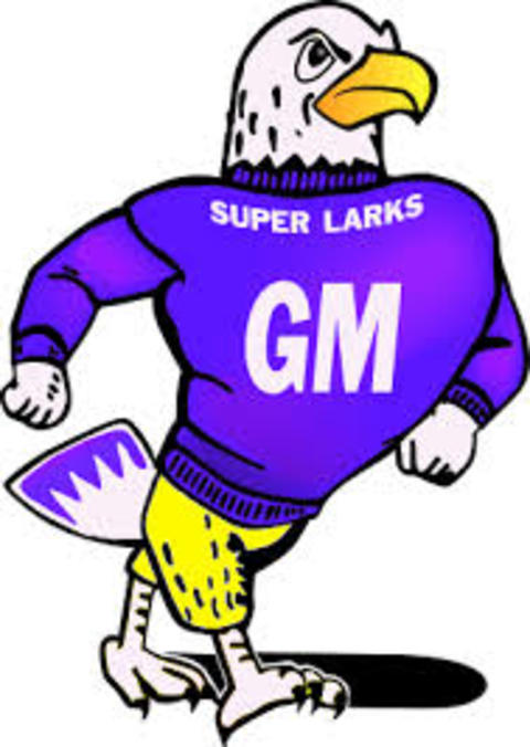 Grand Meadow High School mascot
