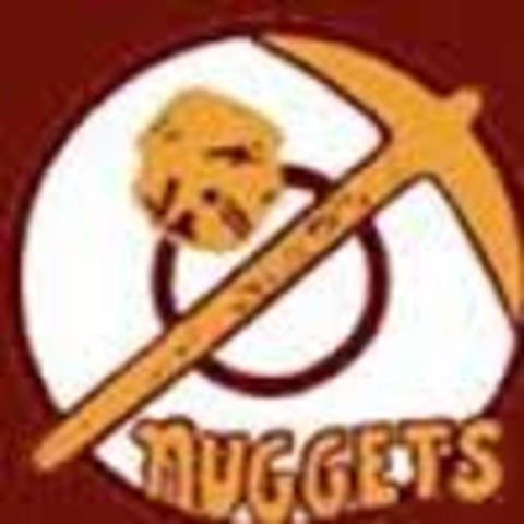 Hawley High School mascot