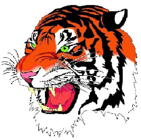 Lake City High mascot
