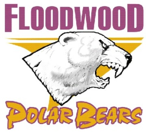 Floodwood High School