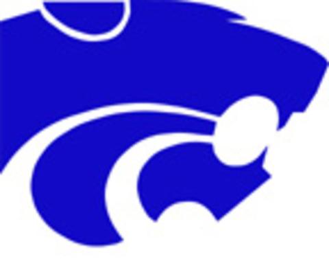 Eagan High School mascot