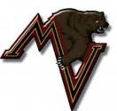 Mountain View High School mascot