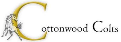 Cottonwood High School mascot