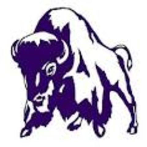 Tooele High School mascot