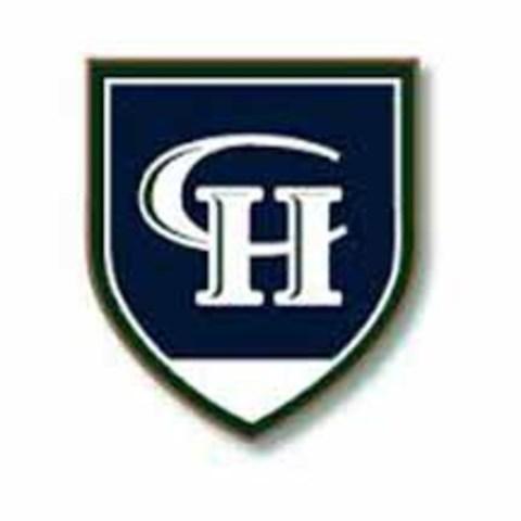 Copper Hills High School mascot
