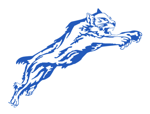 Paris High School mascot