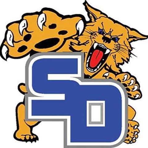 South Davidson High School mascot
