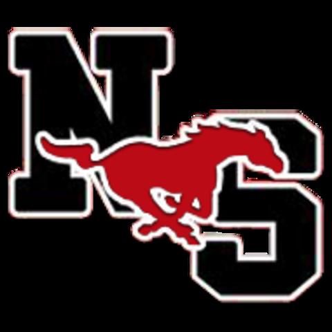 North Shore High School mascot