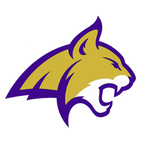 Berryville High School mascot