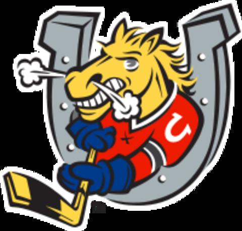 Barrie mascot