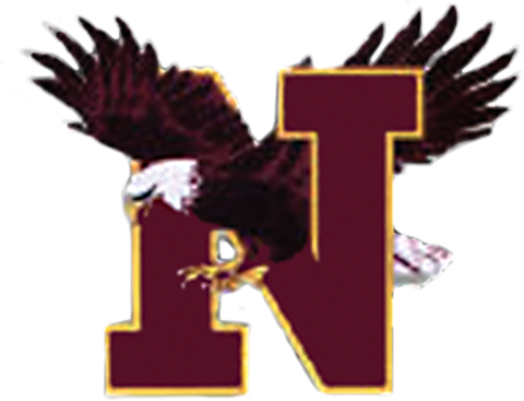 Niceville High School mascot