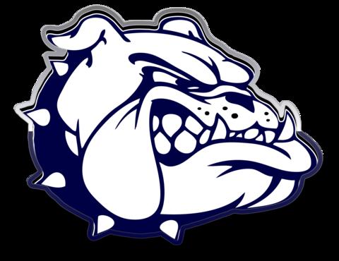 Berwick Area High School mascot