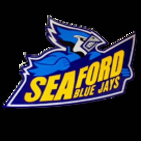 Seaford High School mascot