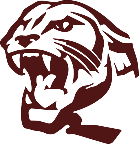 Benton High School mascot