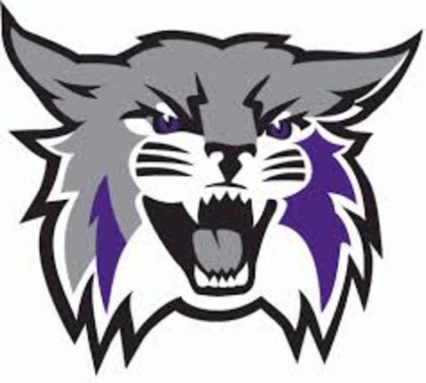 Weldon Secondary School mascot