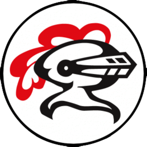 Lincoln-Way Central High School mascot