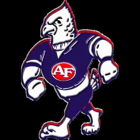 Austintown-Fitch High School