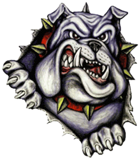 Calexico High School mascot