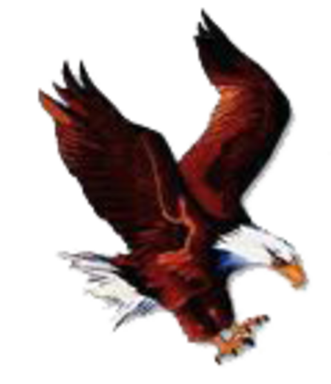 Julian High School mascot