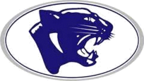 EA Johnson High School mascot
