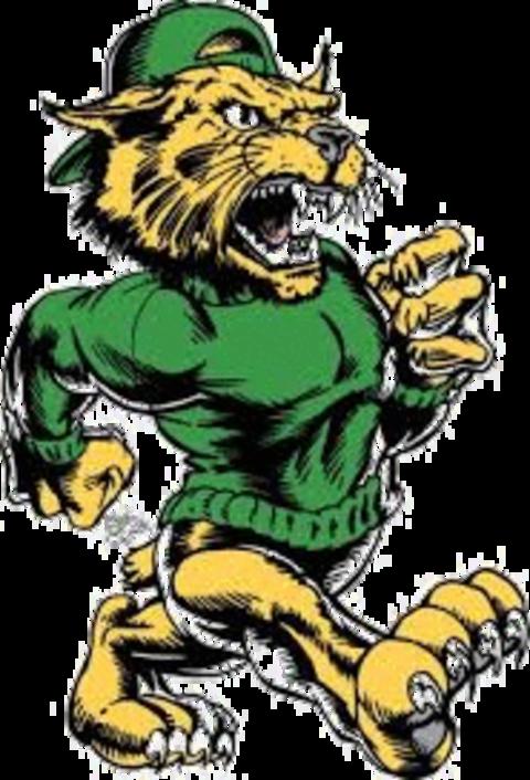 Flint Northwestern High School mascot