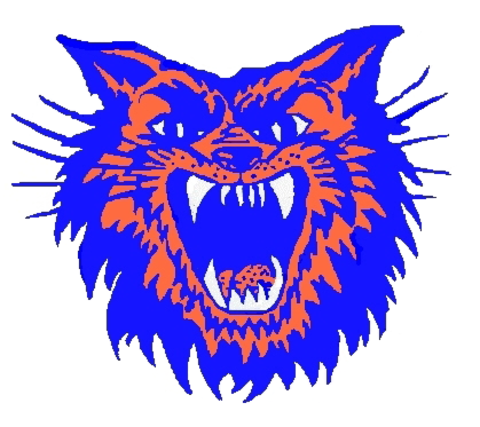 Christopher High School mascot