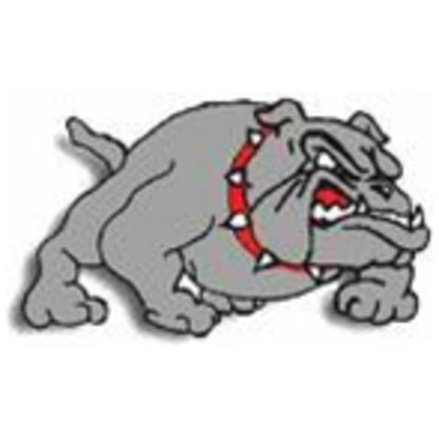 Milbank High School mascot