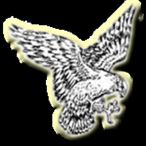 Colman-Egan High School mascot