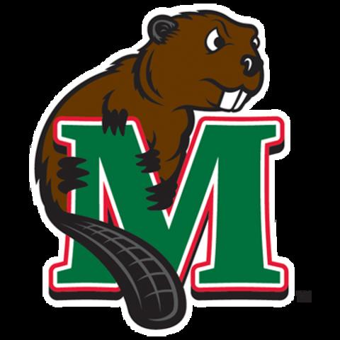 Minot State University mascot