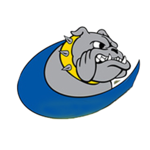 Baltic High School mascot