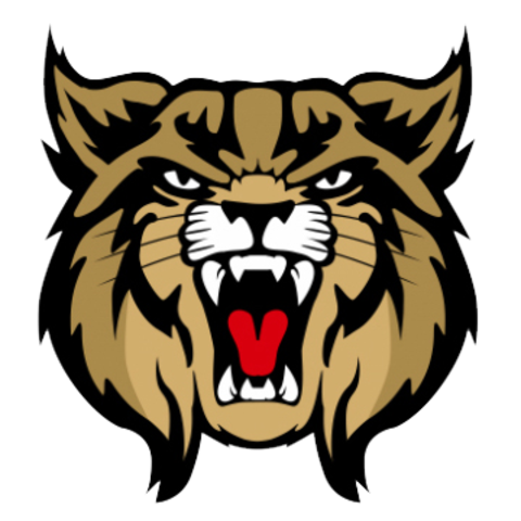 Brookings High School mascot