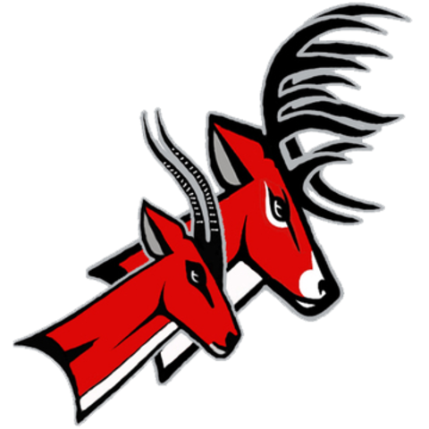 Yankton High School mascot