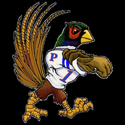 Parker High School mascot