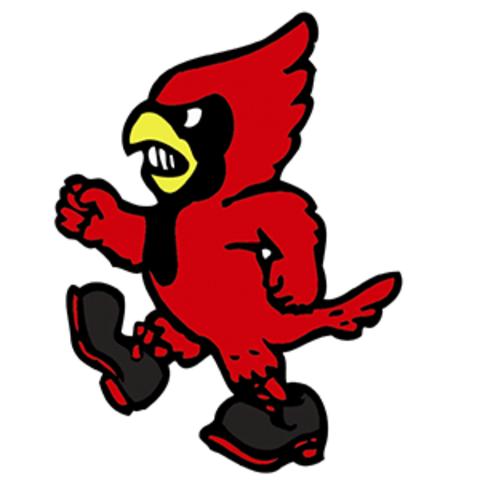 Bison High School mascot