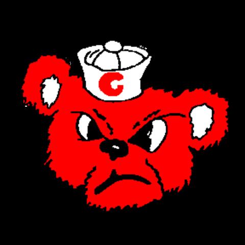 Chamberlain High School mascot