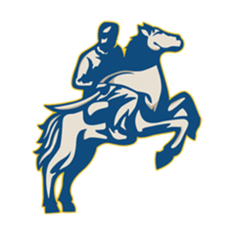 Sioux Valley High School mascot