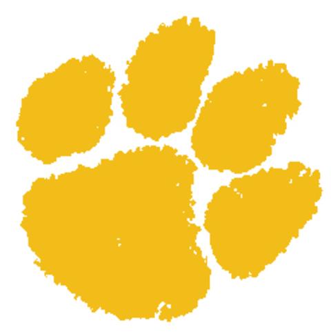 Groton Area High School mascot