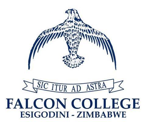 Falcon College mascot
