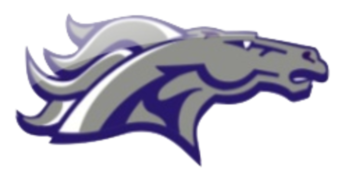 Remington High School mascot