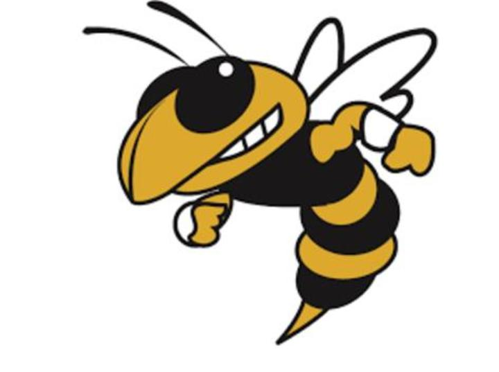 Hinsdale South High School mascot