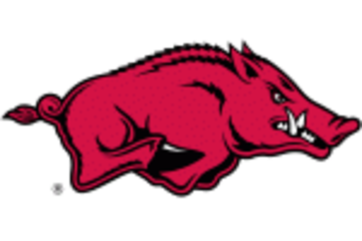 University of Arkansas mascot